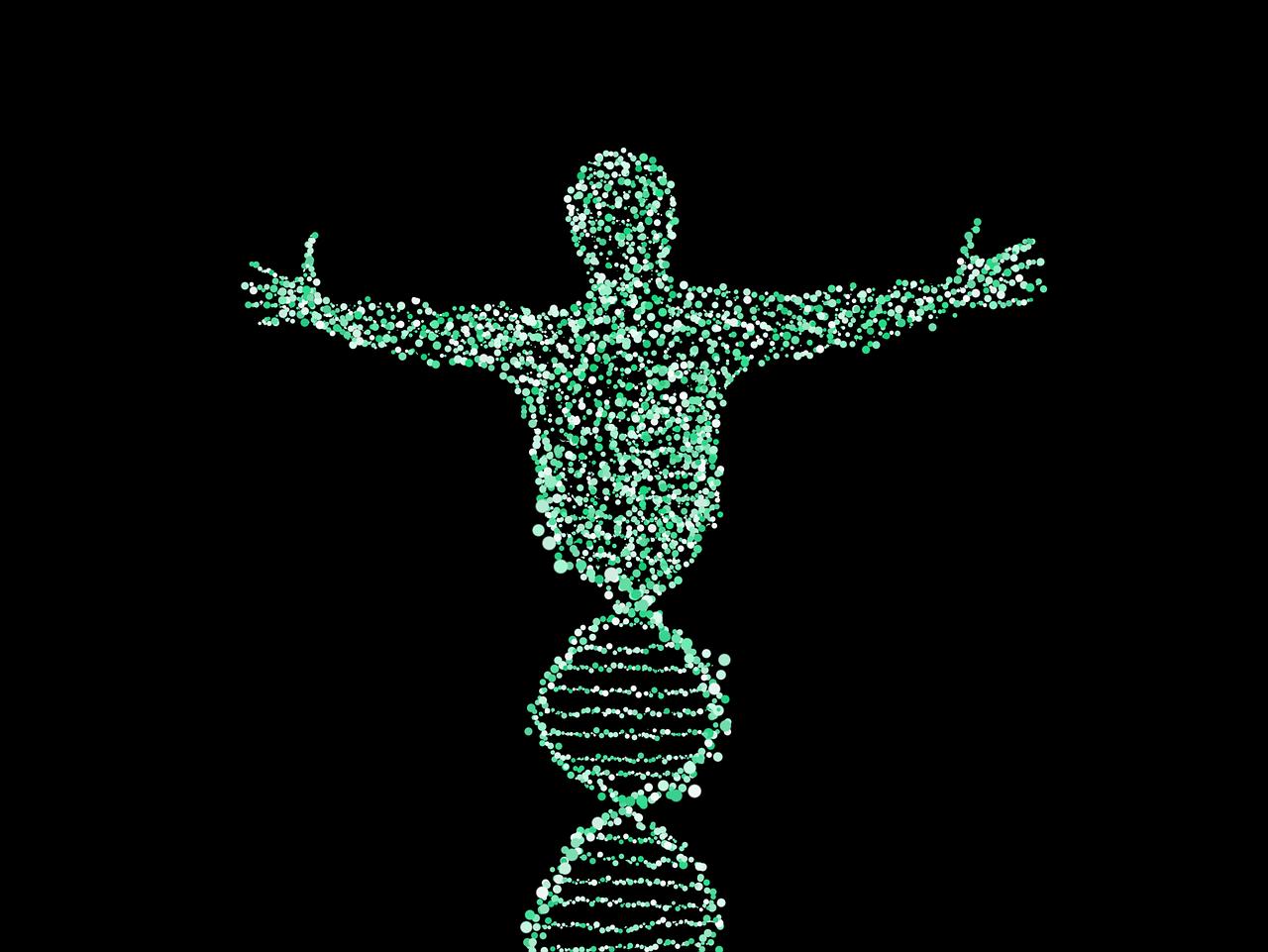 L'épigénétique : comment notre comportement influence nos gènes